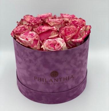 Philanthia Purple Velvet Box